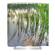 Pond Dreams 3 Shower Curtain