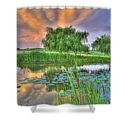 Pond Dreams 4 Shower Curtain