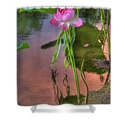 Pond Dreams10 Shower Curtain
