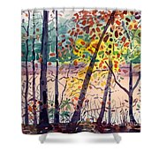Pond In Fall Shower Curtain