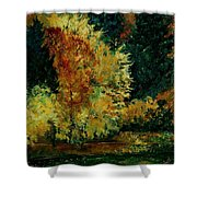 Pond In Fenffe Shower Curtain