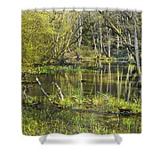Pond In The Undergrowth. Shower Curtain