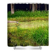 Pond Landscape Print Shower Curtain
