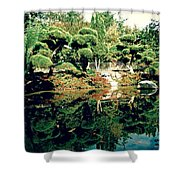 Pond Of Mirrors Shower Curtain