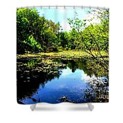 Pond On The Delaware Gap Shower Curtain