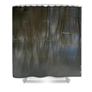 Pond Reflection In The Spring Shower Curtain