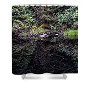 Pond Reflections -- Tongass National Forest Alaska Shower Curtain