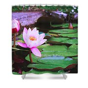 Pond With Water Lilly Flowers Shower Curtain