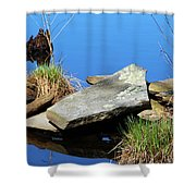 Pondside Stone Shower Curtain