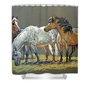 Ponies Shower Curtain