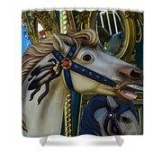 Pony Carrsouel Portrait Shower Curtain