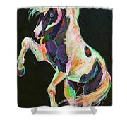 Pony Power II Shower Curtain