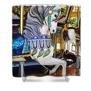 Pony Carousel - Pony Series 5 Shower Curtain
