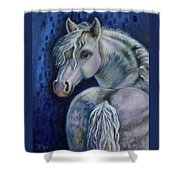 Pony Time Shower Curtain