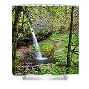 Ponytail Falls, Oregon Shower Curtain