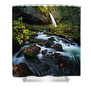 Ponytail Falls With Autumn Foliage Shower Curtain