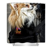 Pooch In The Pouch Shower Curtain