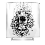 Poodle @standerdpoodle Shower Curtain