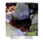 Pool In The Rainforest Shower Curtain