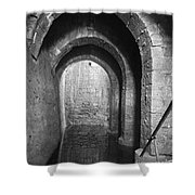 Pool Of Bethesda Shower Curtain