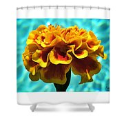 Pool Side Beauty Shower Curtain