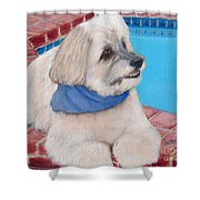 Poolside Puppy Shower Curtain