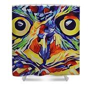 Pop Art Owl Face-1 Shower Curtain