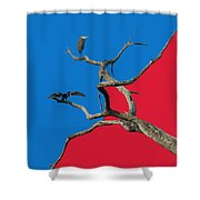 Pop Art Shower Curtain