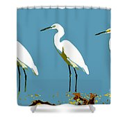 Pop Egrets Shower Curtain