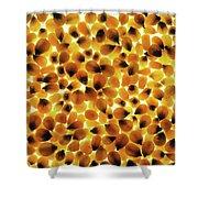 Popcorn Seeds Shower Curtain