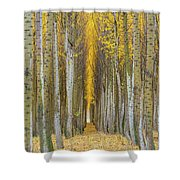 Poplar Tree Farm In Boardman Oregon In Fall Closeup Shower Curtain