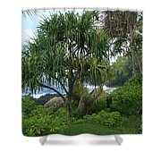 Poponi Maui Hawaii Shower Curtain