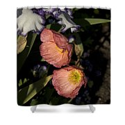 Poppies 6 Shower Curtain