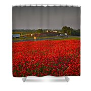 Poppies Along I-85 Shower Curtain