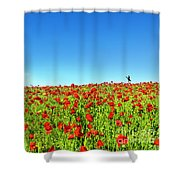 Poppies And A Photographer Shower Curtain
