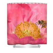 Poppies And Bumble Bee Shower Curtain