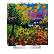 Poppies And Daisies 560110 Shower Curtain