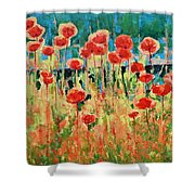 Poppies And Traverses 2 Shower Curtain