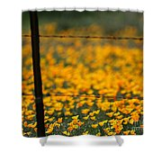 Poppies And Barbed Wires Shower Curtain