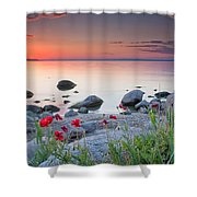 Poppies By The Sea Shower Curtain