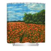 Poppies Field Original Painting Shower Curtain