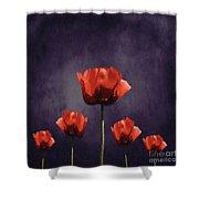 Poppies Fun 01b Shower Curtain