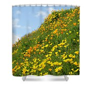 Poppies Hillside Meadow 17 Blue Sky White Clouds Giclee Art Prints Baslee Troutman Shower Curtain