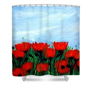 Poppies In A Field Shower Curtain