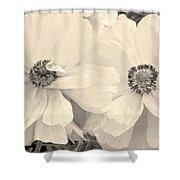 Poppies In Monochrome Shower Curtain