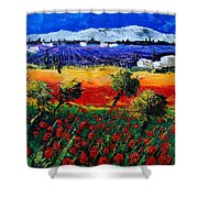 Poppies In Provence Shower Curtain