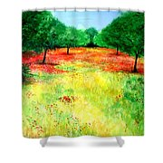Poppies In The Almond Grove Shower Curtain
