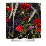 Poppies In The Corn Shower Curtain