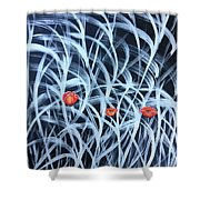 Poppies In The Grass Shower Curtain
