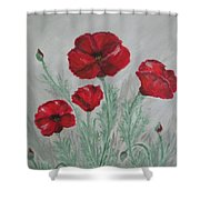 Poppies In The Mist Shower Curtain